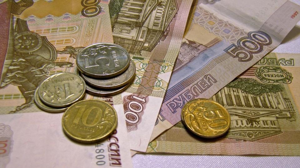 «Единая Россия» не поддержала идею ввести налоги для домохозяек